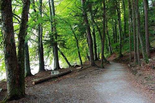 Spiez - Faulensee footpath (Strandweg)