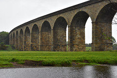 Arthington Viaduct 2 - Photo of Saint-Julien-sur-Calonne