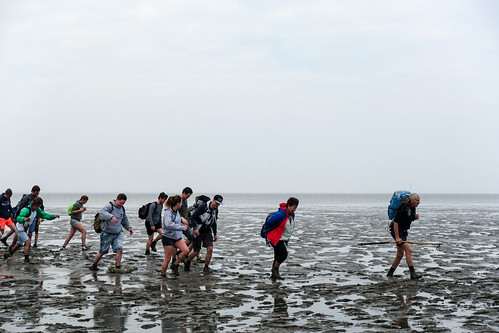 Wadlopen from Holwerd to Ameland