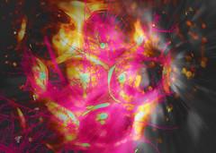 vivid colors 8