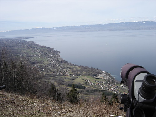 Le Hucel, fav spot for birds migration.