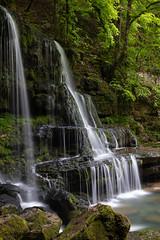 Cascade et source du Verneau