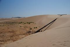W kierunku Al Kamil