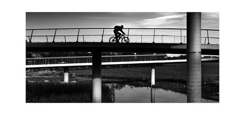 The Cyclist