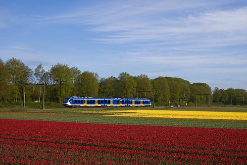 NS SNG - trein 8119 Zwolle - Groningen  - Hooghalen