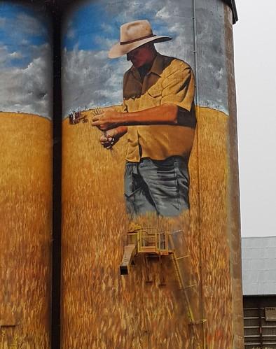 Silo Art Weethalle NSW.