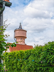 2019-05-30 DGS L1000252-Modifier.jpg - Photo of Schnersheim