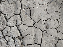 Cracked ground texture 08 - by texturepalace