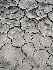 Cracked ground texture 10 - by texturepalace