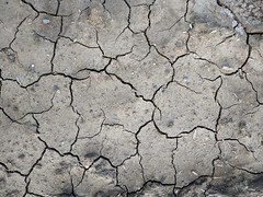 Cracked ground texture 06 - by texturepalace
