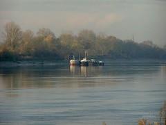 Péniches sur la Garonne. - Photo of Portets
