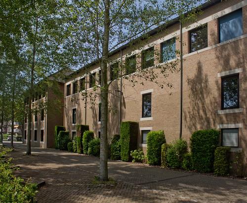 Breda - De Zonnebloem