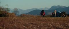 02/12/2016 hélène et raissa : travail au sol