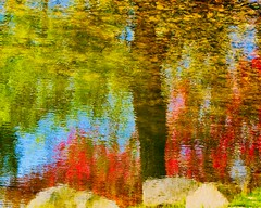 Ripple and reflections