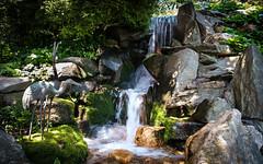 Hillwood Estate Japanese Gardens