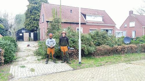 Rozendael50