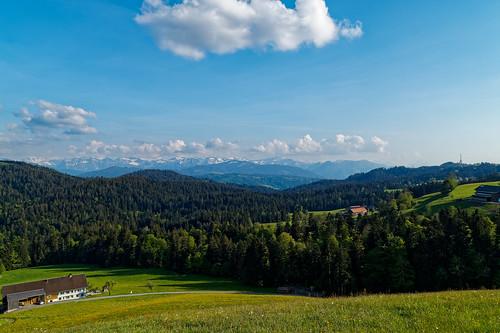 View of the Bregenzerwald from Trögen