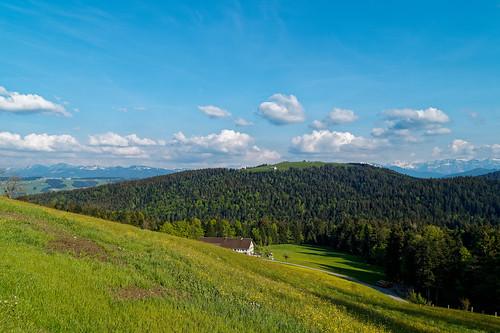 View towards the Hirschberg