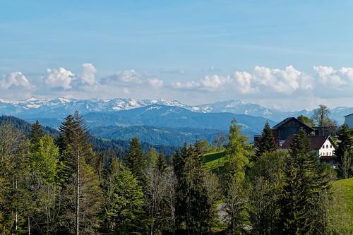 View of the Bregenzerwald above Trögen