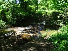Brookside Preserve (18)