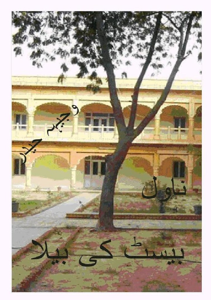 Beast Ki Baela is a very well written complex script novel by Wajeeha Haider which depicts normal emotions and behaviour of human like love hate greed power and fear , Wajeeha Haider is a very famous and popular specialy among female readers