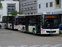 MAN Lion's City M n°6025 & 6028 - Synchro Bus (Chambéry)
