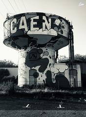 Caen dis tu ?... - Photo of Tilly-la-Campagne