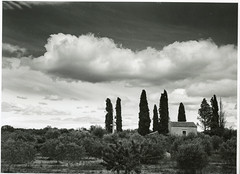 2019_05 Mamiya 7 FP4  clouds istria