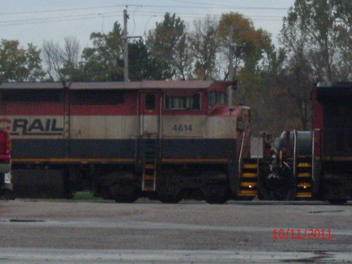 BCOL 4614