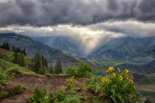 Storm Over Hells Canyon