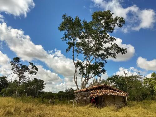Paisagem do interior da Bahia, Nordeste do Brasil