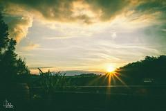 Sunset Selection