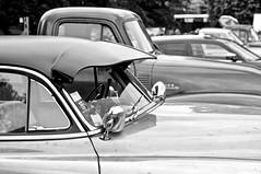 Car show parking