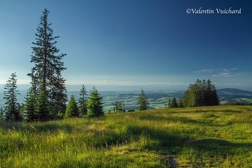 "SF-_MG_0374 - Panoramic parkway, ""Alpettes"" trail, Gruyère region - Switzerland"