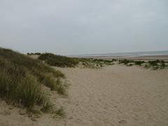 Dunes de Fort Mahon (Eden62) (3) - Photo of Coquelles