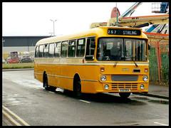 Buses - Scotland, Northern Ireland & The Irish Rep