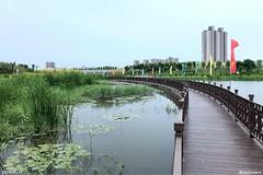 幸福河生态公园
