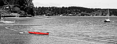 Harborscape with Red Kayak
