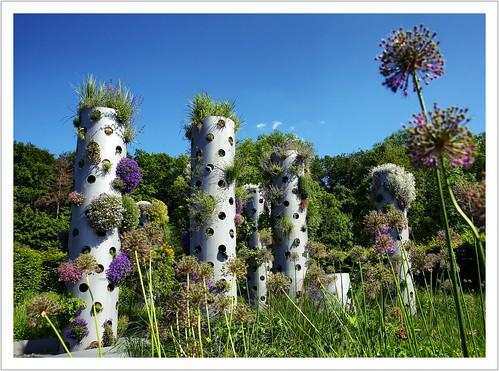 Der neue Gartentrend - ab in die Höhe...