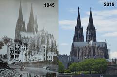 War, History & Timeline