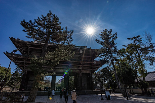 The diamond of todaiji