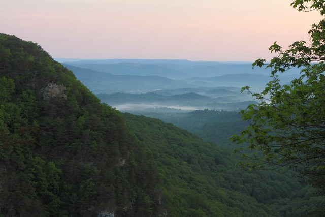 A Georgia Morning
