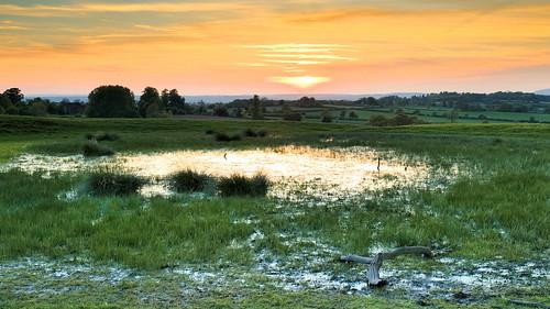 Sheepwalks pool at sunset