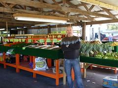 Jerry @ Bears Groves Market, Tampa, FL