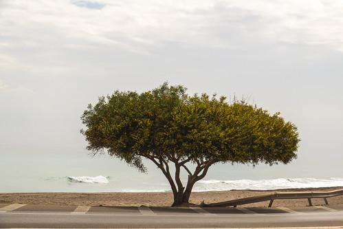 Spain - Almeria - Mojacar - Beach