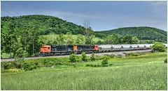 Western New York & Pennsylvania Railroad 6-3-19
