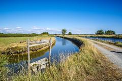 Marais de Vendée