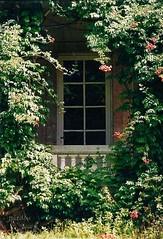Une fenêtre du château Millefleurs. - Photo of Isle-Saint-Georges
