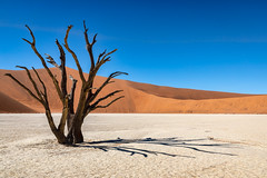 Image by NoVice87 (92110231@N03) and image name Dead Vlei photo  about Classic location in Namibia.