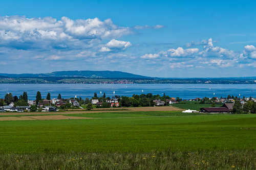View of Lake Constance from above Münsterlingen